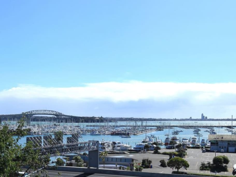 Westhaven Marina and Auckland Harbour