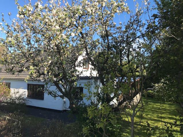 Hyggeligt bondehus tæt på Løgstør og Vesterhavet.
