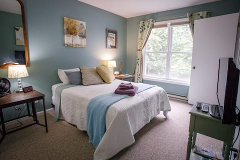 Private Guest Room in Cute South-end Neighborhood