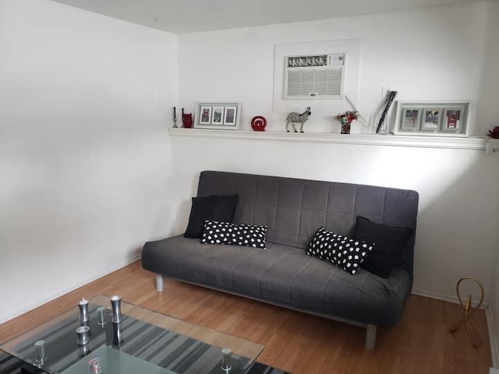 1 room basement apartment semi-private entrance.