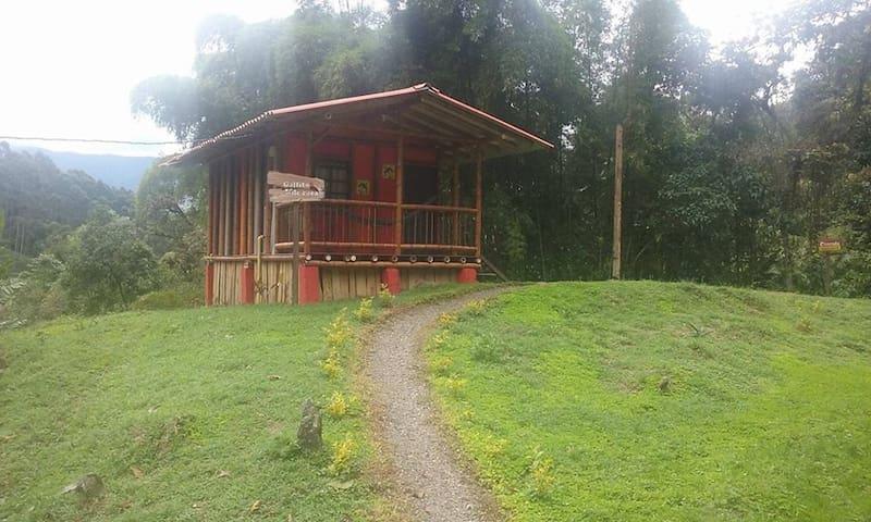 Hermosa cabaña natural (Gallito de roca)