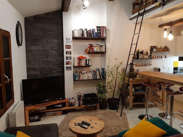 appartement centre-ville La-Roche-sur-Foron
