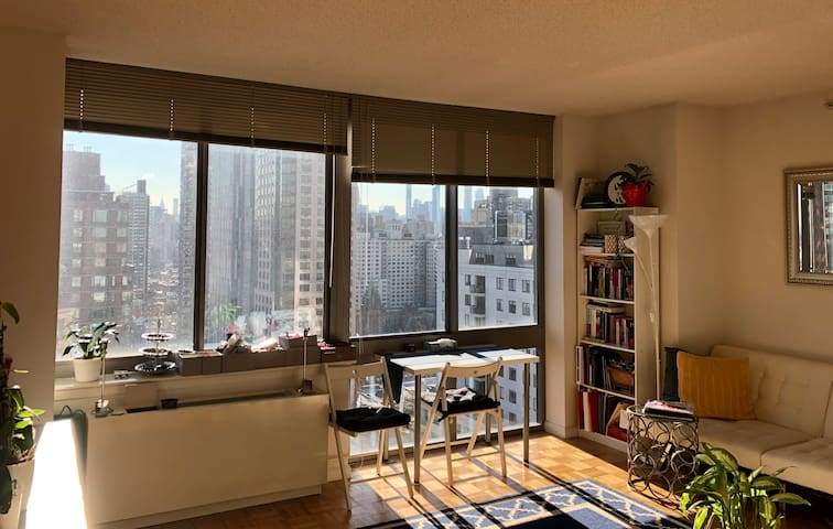 Beautiful sun drenched apartment with gorgeous Manhattan views