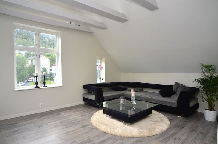 Modern and affordable penthouse, center is 7 min. - Bergen - Appartement