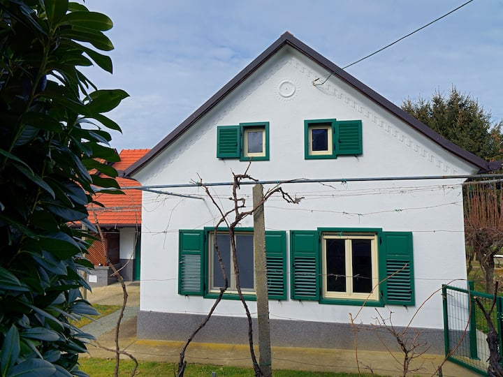 Detached house near mystic Mura river