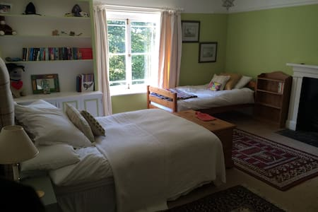 Spacious Room close to town centre - Aamiaismajoitus