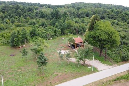 Evergreen house Plitvice