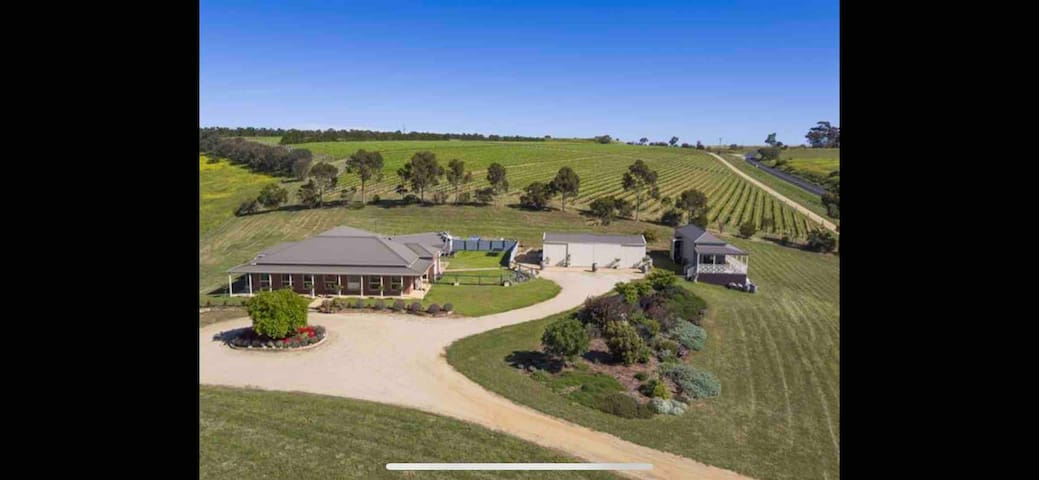 Eagles Rise Vineyard and House