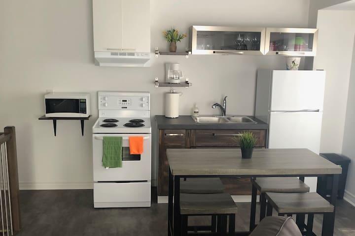 Quaint Apartment for 4 ppl near Ottawa City Centre