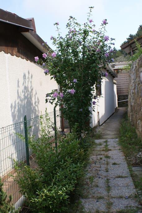 Il boungalow Sixdays si trova all'interno di un villaggio,nell'assoluta tranquillita' ed immerso nel verde