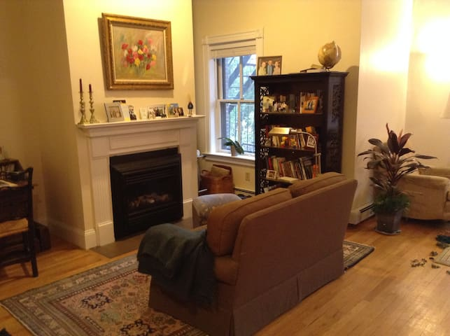 Spacious 3BR in the South End - Boston - Apartamento