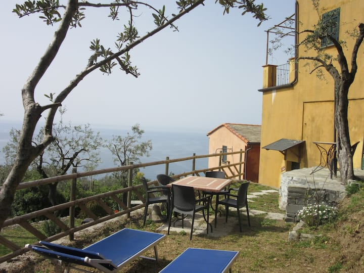 Studio with wonderful sea view - 3 persons