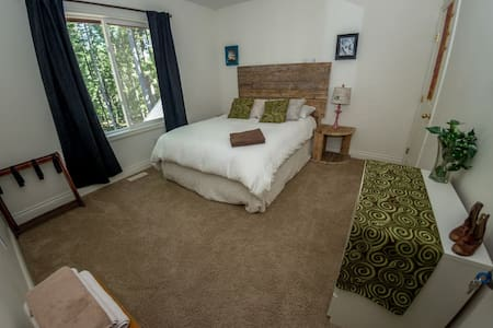 Basic Double room with forest views