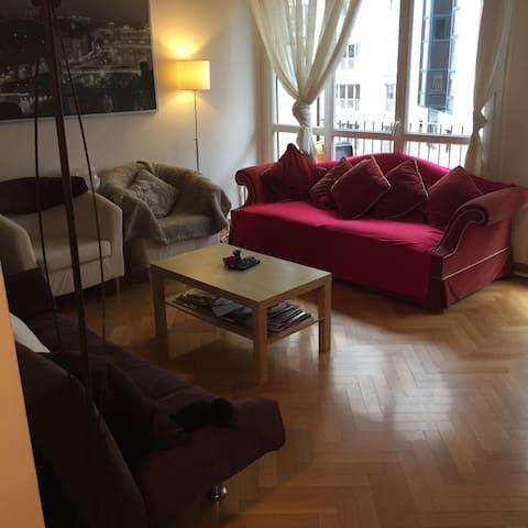 Bel appart de 60 m2 Paris 15eme - Paris - Ev