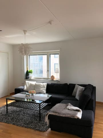 Huge central apartment in Gothenburg - Longterm