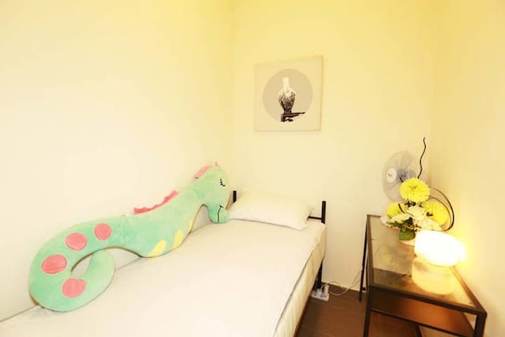 Sweet and Pte Maid Room near Dhoby Ghaut MRT 10265 - Singapore - Apartment