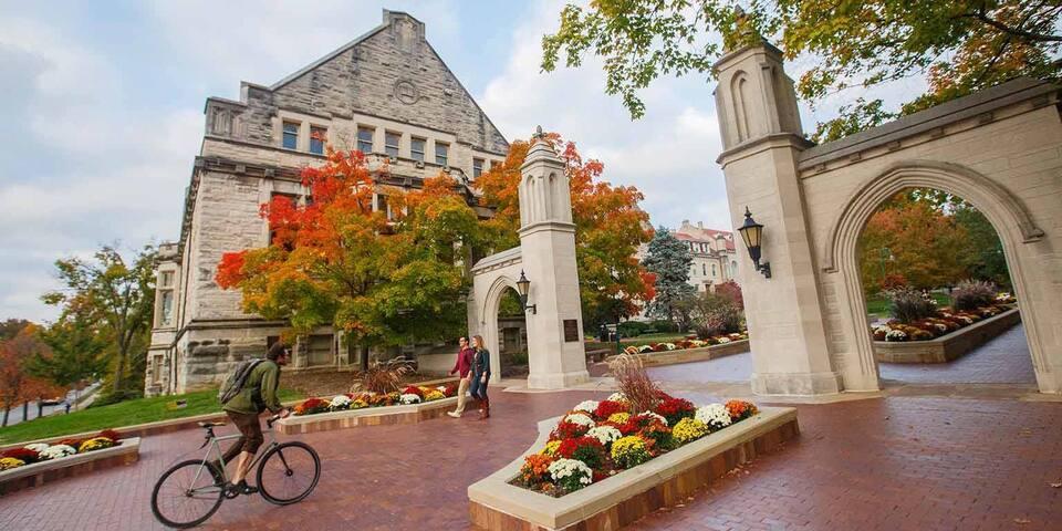 Campus King Bed Suite- Walk to IU / Kirkwood !