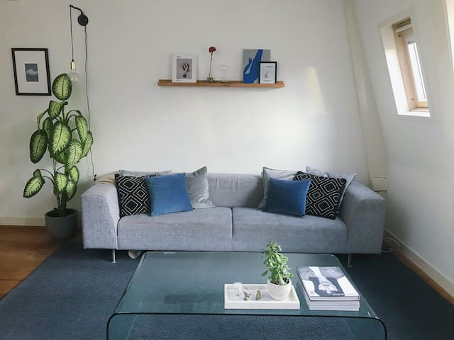 Loft apartment with roof terrace in the Pijp area