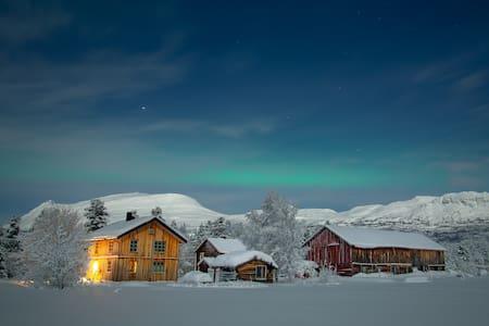 Log-cottage & Northern lights at the Huskyfarm