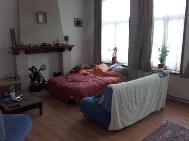 l auberge espagnole - Anhée - Apartment
