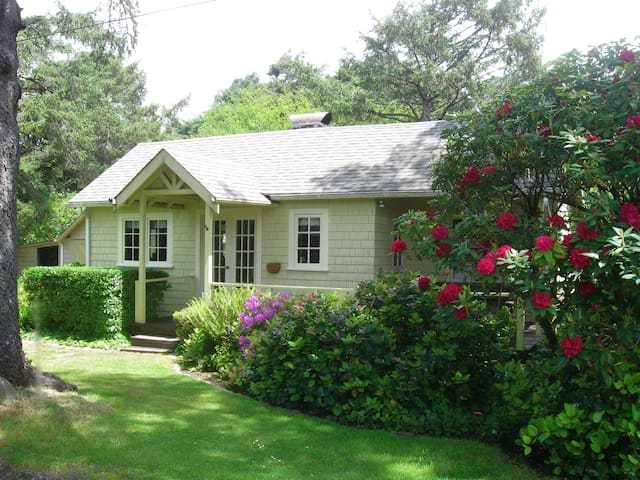 Charming 1924 Beach Cottage 1 block from Beach