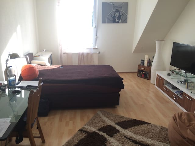 Zimmer in WG am Stadtpark, Uninah - Kaiserslautern - Condominium