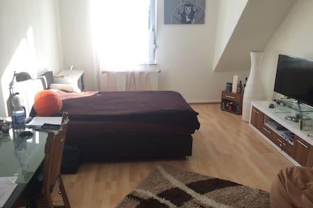 Zimmer in WG am Stadtpark, Uninah - Kaiserslautern - Apartament