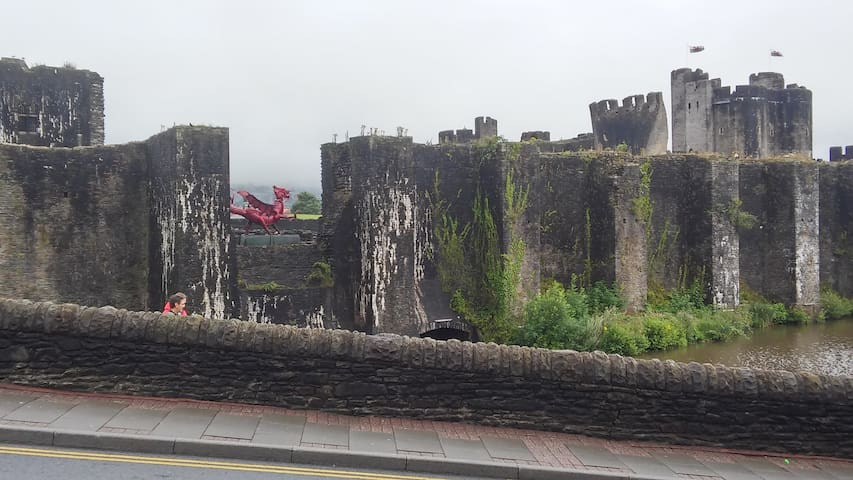 Castles Galore (Family room/breakfast Caerphilly)