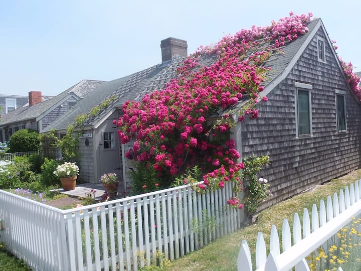 Newly Updated Rose Covered Cottage with Ocean View