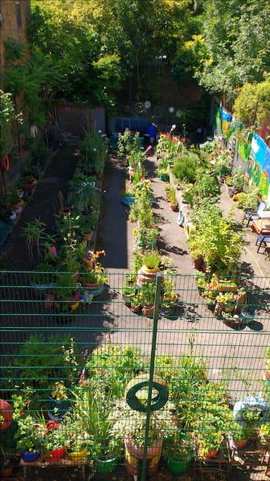 Award winning community garden!