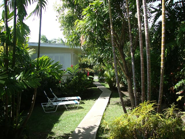 Hibiscus Apartments - Villa 55 -Apt 1 - Specials - Holetown - Daire