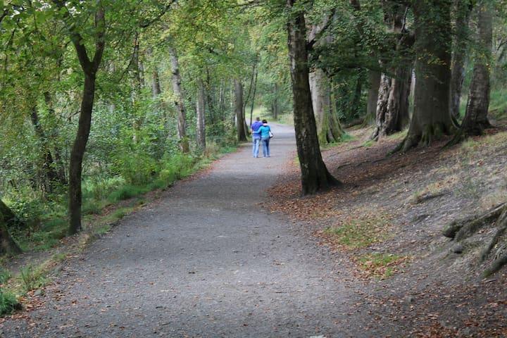 Strolling in Balloch Country Park
