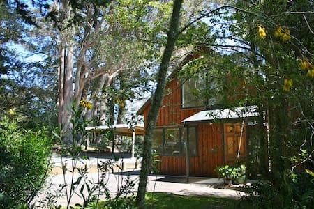 Ribbonwood Retreat, Upper Moutere, Tasman/Nelson