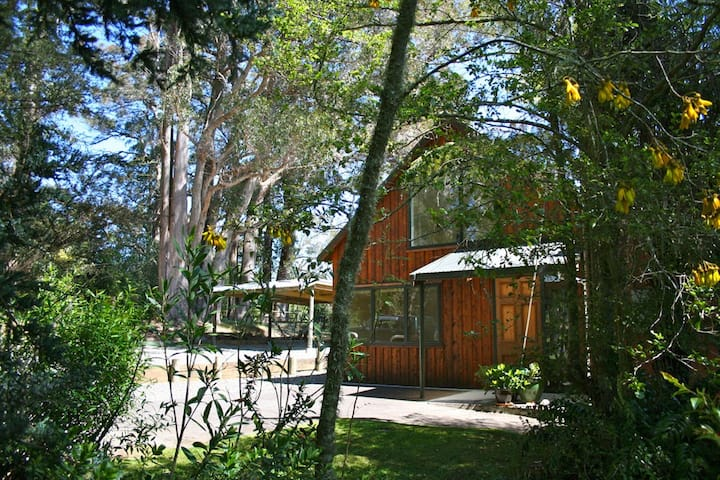 Ribbonwood Retreat, Upper Moutere, Tasman/Nelson
