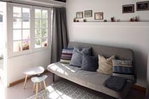 Salon/Chambre (divan-lit 2 personnes)