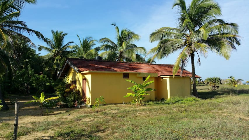 Typical Sri Lankan House with Waterfront