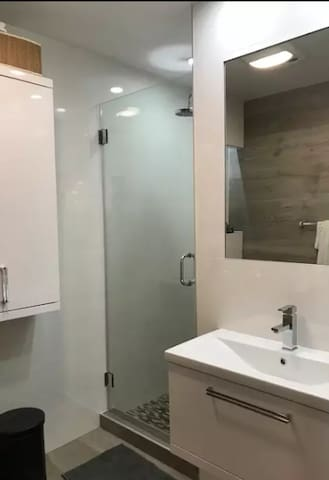 Main Bathroom with walk shower