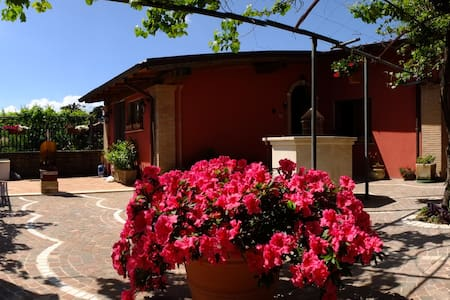 L'UPUPA B&B - Palestrina - Bed & Breakfast