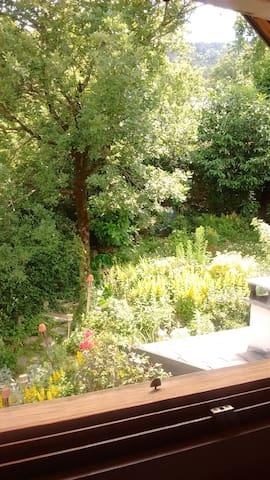 le jardin supérieur vu de la chambre
