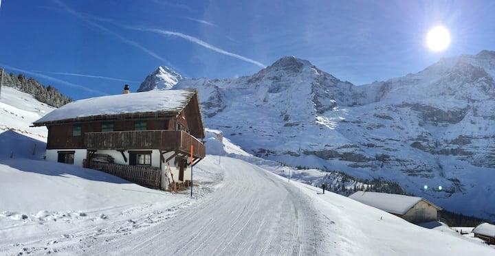Täglich grüsst die Jungfrau. Hütte an Toplage