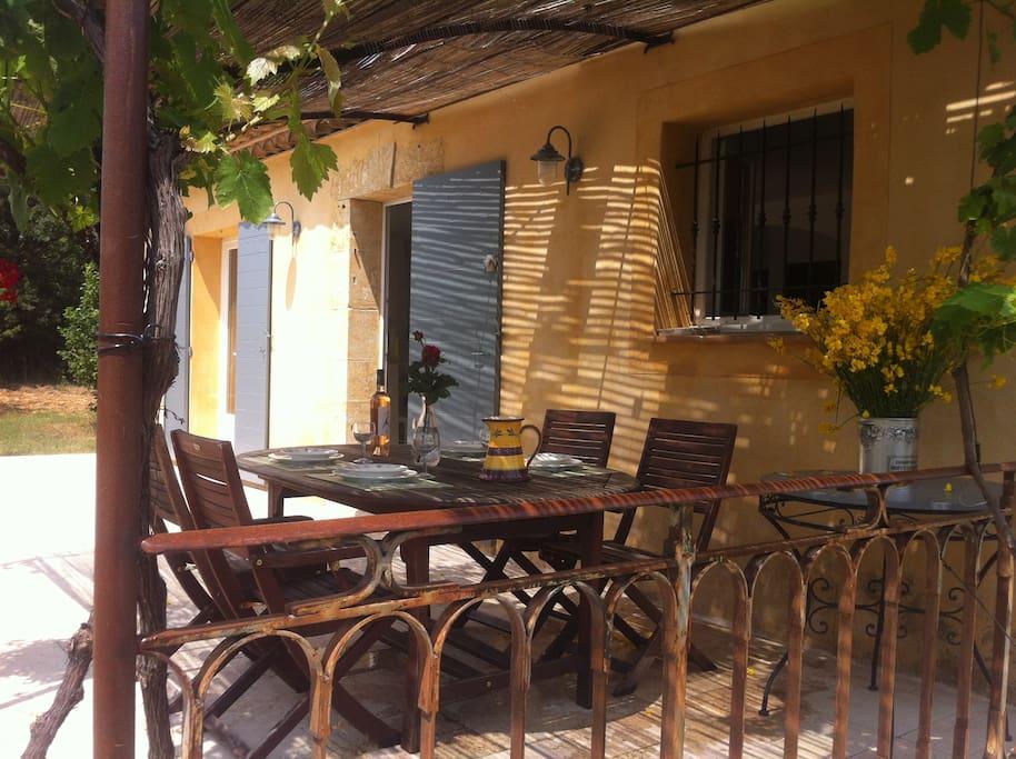 Terrasse sous la vigne vierge