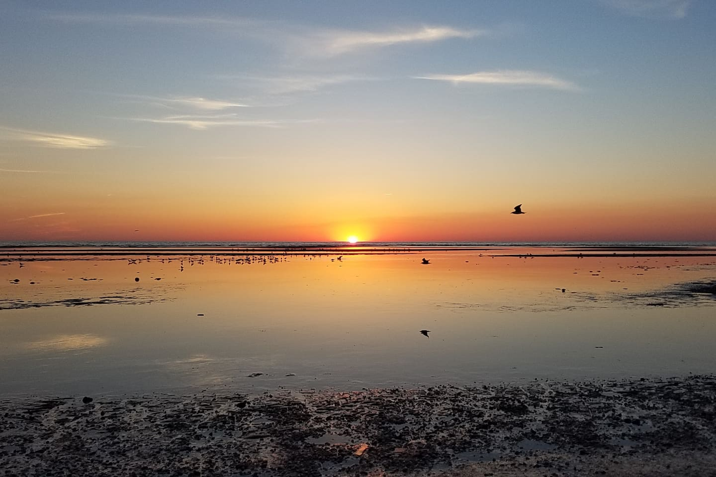 Most beautiful sunsets not to miss!