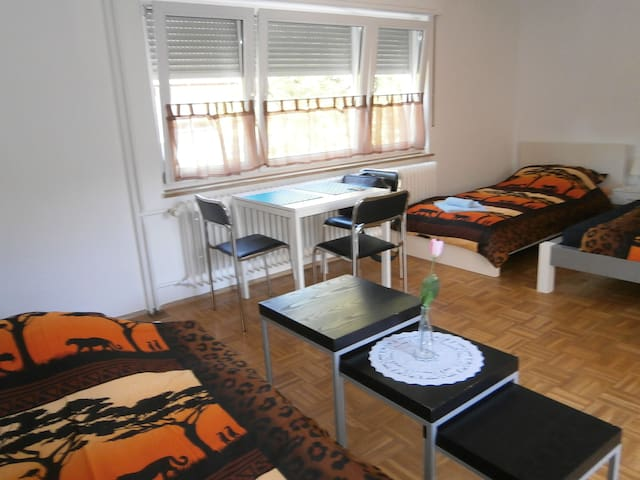 City-Room Nr 8 Singen für -4 Pers. - Singen (Hohentwiel) - Appartement