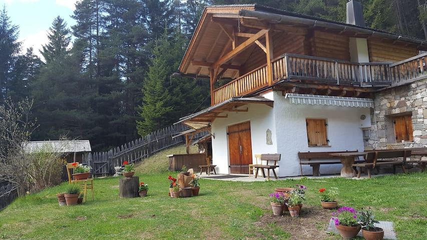 Alpenchalet Dolomiten