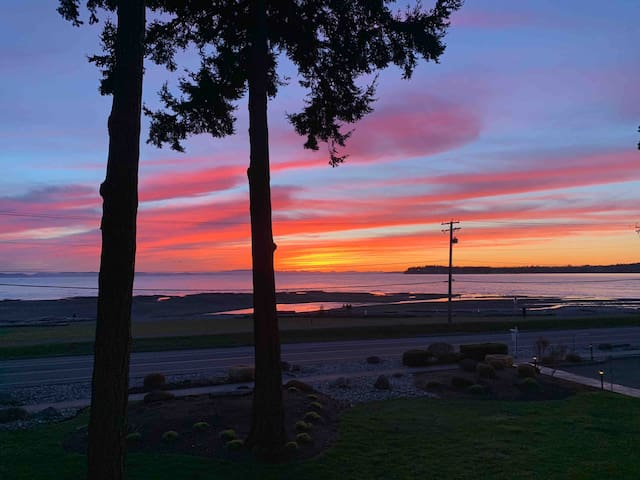 The Best Sunsets in Birch Bay