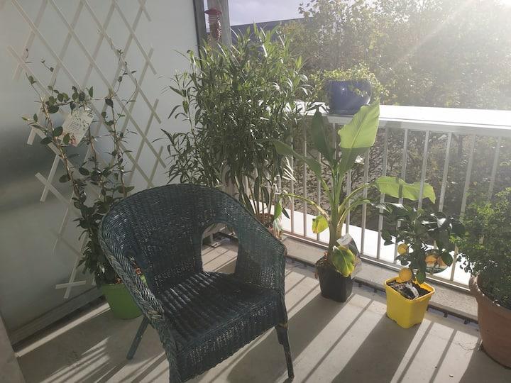 Grand appart, 2 terrasses de 10 m2 ensoleillées