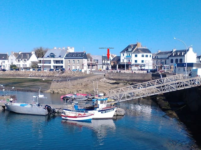Le port - Lesconil, 29740 Plobannalec-Lesconil, France - Apartment