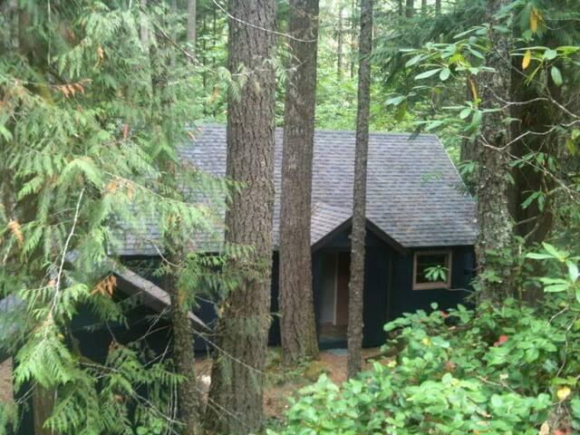 Wyeast Cabin on Mt Hood