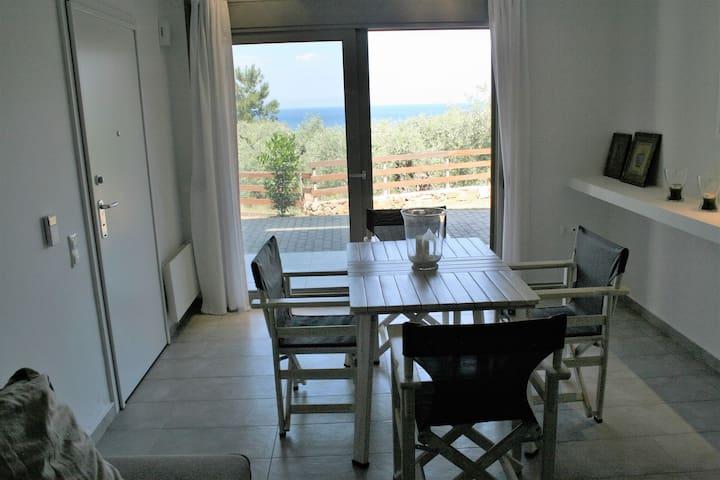 Ammos Apartment - Thasos - 公寓