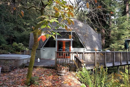 Spacious Redwood Dome Retreat in the Forest - Cazadero